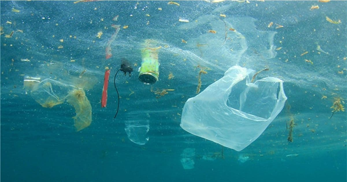 Blog - No To Plastic